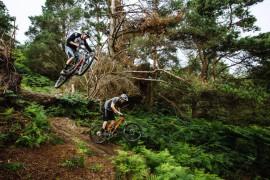 Magia Surrey Hills