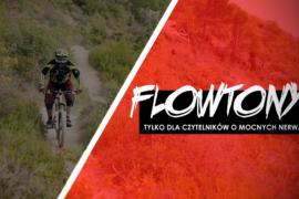 Flowtony: Święto wiosny